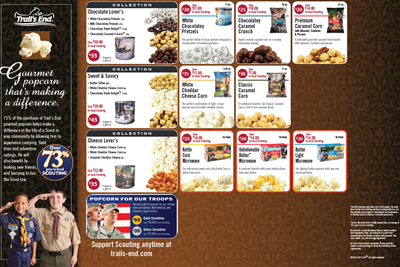 Popcorn form image